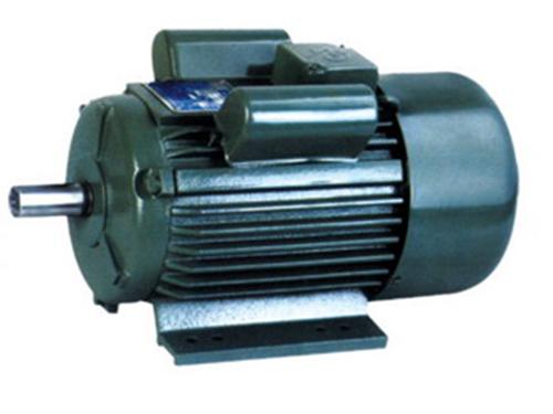 YL系列单相双值电容异步电动机